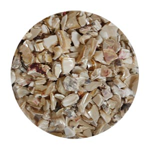Shell Aggregate Size 2