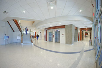 University of Memphis - Terrazzo Flooring